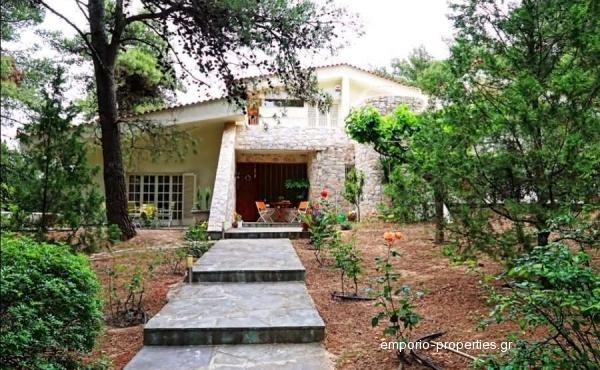 Κατοικία-250/Εκταση-3500/Δροσιά